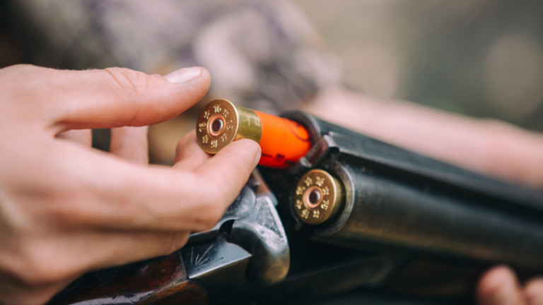 Ловци недоумяват как да борят чумата по свинете с експлозиви