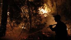 ЕК: Пожари засягат повече държави от когато и да било