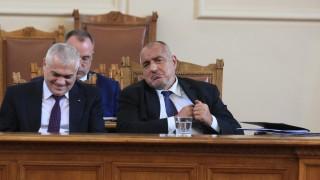 Борисов умилен от кадъра как Нинова гали чумава козичка