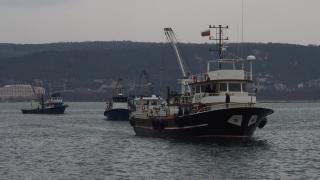 България и Румъния могат да улавят с 32% повече калкан в Черно море от 2018 г.
