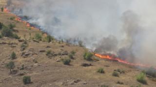 Лесничеи загинаха при пожар край санданското село Петрово