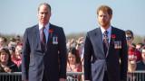 Принц Уилям, принц Хари, Finding Freedom и защо двамата не са си говорили два месеца