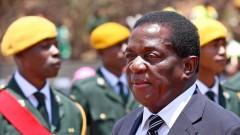Крокодила ще е новият президент на Зимбабве