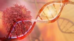 С петиция настояват да се създаде Национален институт за борба с рака