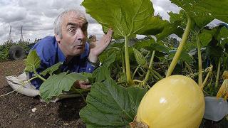 Снимки на най-големите зеленчуци във Великобритания