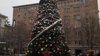 Посланик Макаров запали светлините на елха, дарена за благото на народите ни