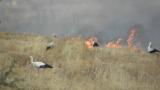 """Код """"червено"""" - опасност от пожари в 15 области на страната"""