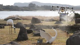 Птичи грип в трета префектура в Япония