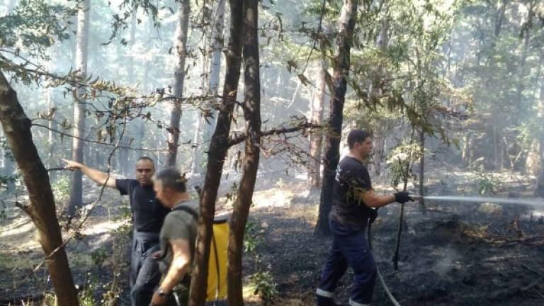 Военни и днес помагат за пожара над Розино