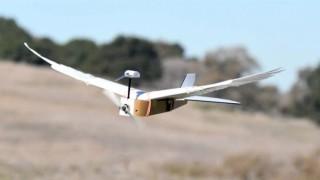 Това е първият летящ робот с пера от птица