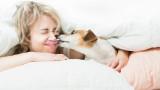Кучешките целувки и рискът от тях