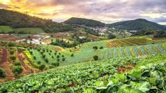 Кои са страните с най-устойчиво хранително производство