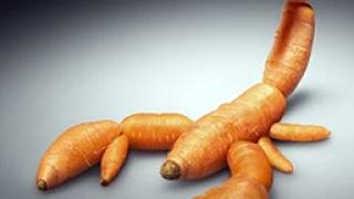 """САЩ искали да """"накажат"""" Европа заради борбата с ГМО"""