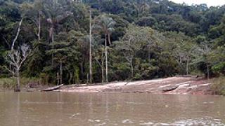 Кораб потъна в Амазонка, 7 загинаха