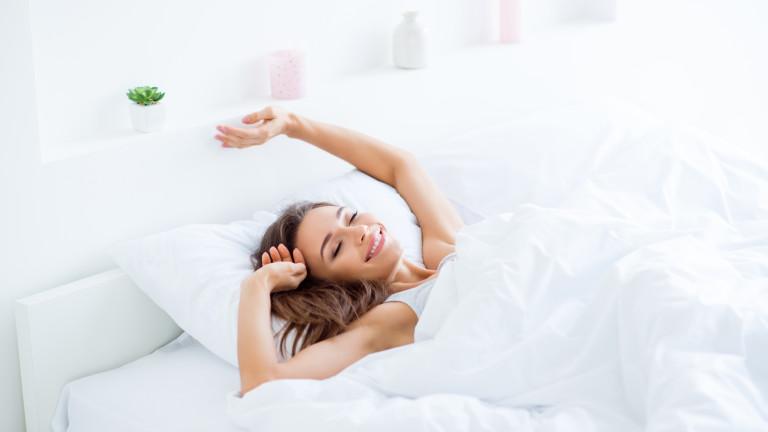Как сънят прочиства мозъка