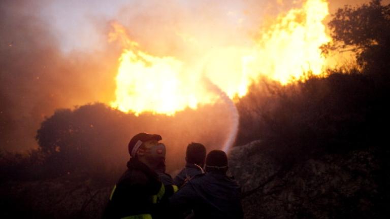 Евакуират хора заради пожари в Израел и на Западния бряг