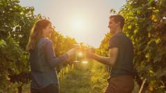 Уикенд на любовта и виното в 5 винарски изби