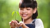Засади 10 дървета, за да завършиш училище