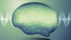 Музиката регенерира мозъка