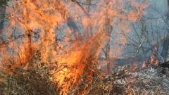 Пожарът в Монтанско е локализиран
