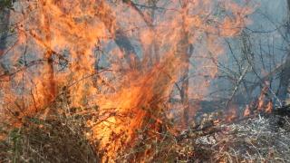 Пожар затрудни движението по главния път Е-79