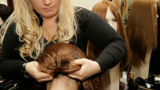 Фондацията на Нана Гладуиш дарява перуки