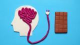 Захарта, мозъкът, допаминът и ефектите от консумацията й