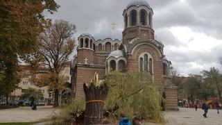 """Падна една от върбите пред """"Св. Седмочисленици"""" в София"""