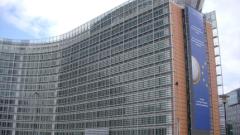 Брюксел удари заменките ни на гори