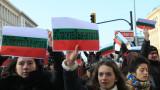 В Пазарджик сърдити на Нено Димов заради лъвчетата