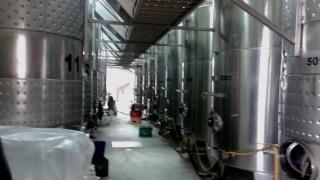 83 хиляди литра вино в нелегална поморийска изба откриха митничари