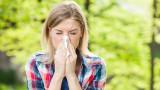 Кои хора страдат от сенна хрема