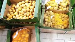 БАБХ не откри нарушения при продажбата на български картофи