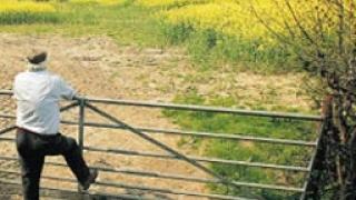 Фермери любители оскъпиха британските села