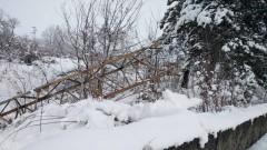 Десетки населени места без ток в Старозагорско