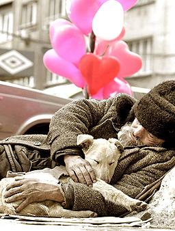 Клошарите от Велико Търново с приют