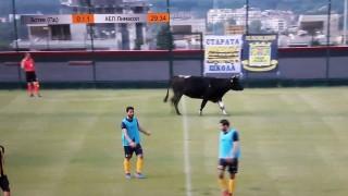 АЕЛ би Ботев, бик на терена вкарва мача в спортните емисии из цяла Европа!