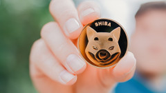 Мъск дава, Мъск взема: Криптовалутата Shiba Inu потъна