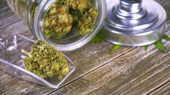 Израел - третата страна, която позволява износ на медицинска марихуана