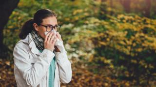 Есенните алергии - какво ги предизвиква