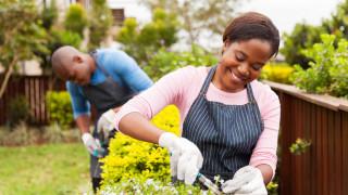 Африка ще изпревари Азия по брой на работната ръка до края на века