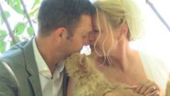Да се ожениш в компанията на 1000 котки