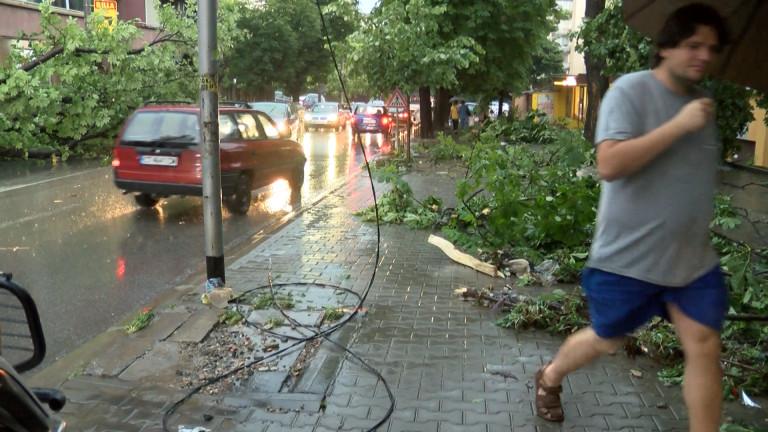 Пловдив се възстановява след вчерашната буря