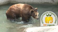 Мобилно приложение разказва истории за животните в столичния зоопарк