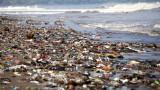 Кит почина, след като погълна 80 пластмасови торби в Тайланд