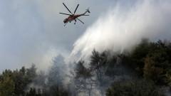 И Гърция за общ европейски авиофлот срещу пожарите