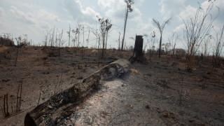 Военни самолети обливат с вода горящата джунгла в Амазония