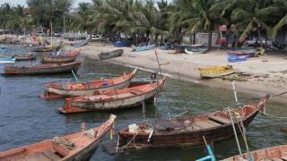 Робство и принуда стоят зад морските дарове, продавани от Nestlé