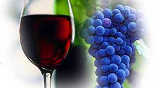 50% от пазара на вина и ракии у нас-нелегален