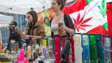 Канада – най-големият пазар за легална марихуана